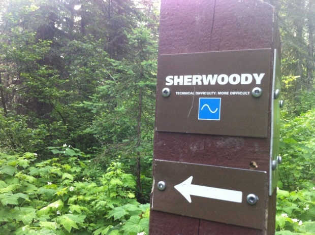Sherwoody Forest